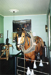 Pit Pony and Horse Harness Display